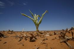 Změny klimatu