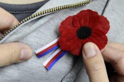 Vlčí mák s trikolorou k připomenutí Dne válečných veteránů