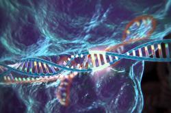 CRISPR–Cas9