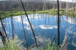 Mizející permafrost