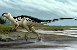 Burianosaurus augustai