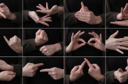 Znakový jazyk