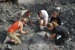 Fosilní nálezy v Polsku