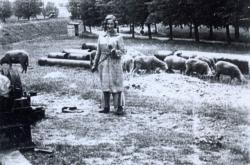 Doris v Terezíně pásla ovce