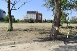 Nově vzniklá plocha v sousedství areálu Fakultní nemocnice v Olomouci