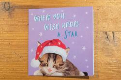 Podoba vánočního přání, ve kterém se našel vzkaz z čínského vězení
