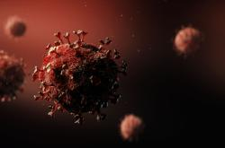Vizualizace viru SARS Cov2