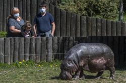 Návštěvníci v Safari Parku Dvůr Králové