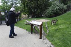 Nová expozice v Zoo Praha - Darwinův kráter