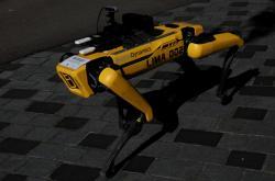 Robotický pes Spot