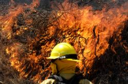 Hasiči bojují s lesními požáry v Kalifornii
