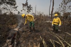 Požáry v Brazílii v srpnu 2020