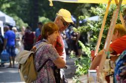 Letní etapa výstavy Flora Olomouc (2020)