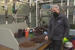 Mykobakterie se mohou vyskytovat  v zahradnickém substrátu