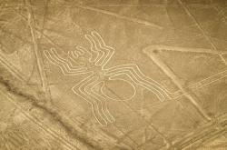 Pavouk na planině Nazca je dokladem uctívání pavouků v předkolumbovské Americe