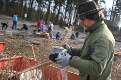 Vysazování netradičních listnatých stromů u Brna