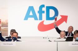 Sjezd AfD