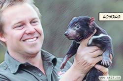 Mláďata tasmánského čerta