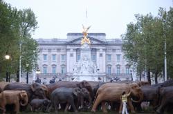 Charitativní organizace Elephant Family vystavila v Londýně sto dřevěných soch slonů v životní velikosti