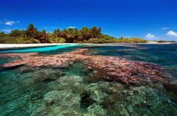 Korálové útesy u Kiribati