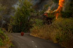 Postup lávy na ostrově La Palma se mírně zpomalil