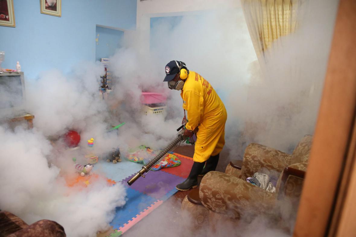 Boj s virem zika