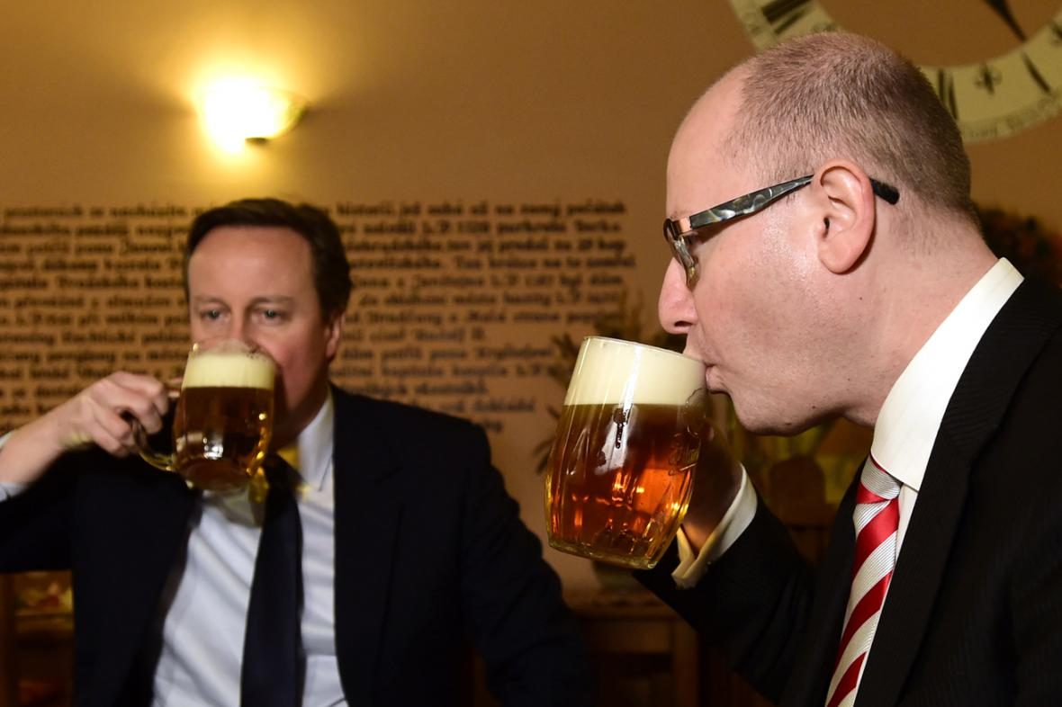 David Cameron a Bohuslav Sobotka