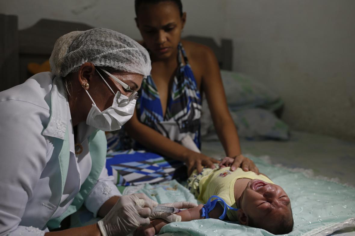 Dopady viru zika