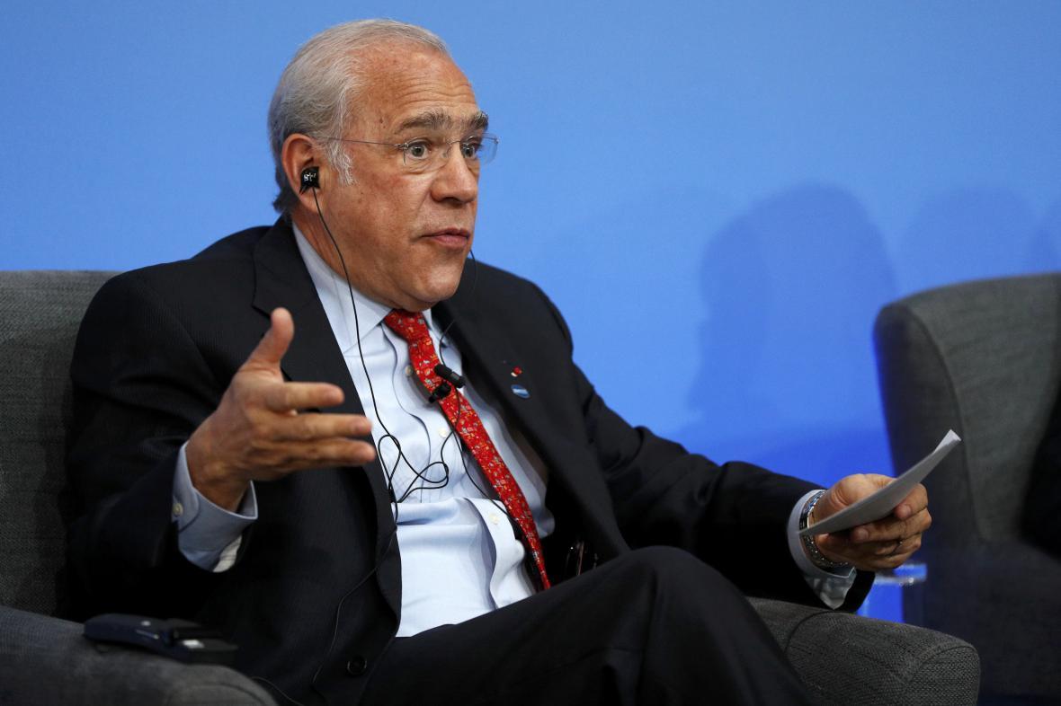 Generální tajemník OECD José Ángel Gurría