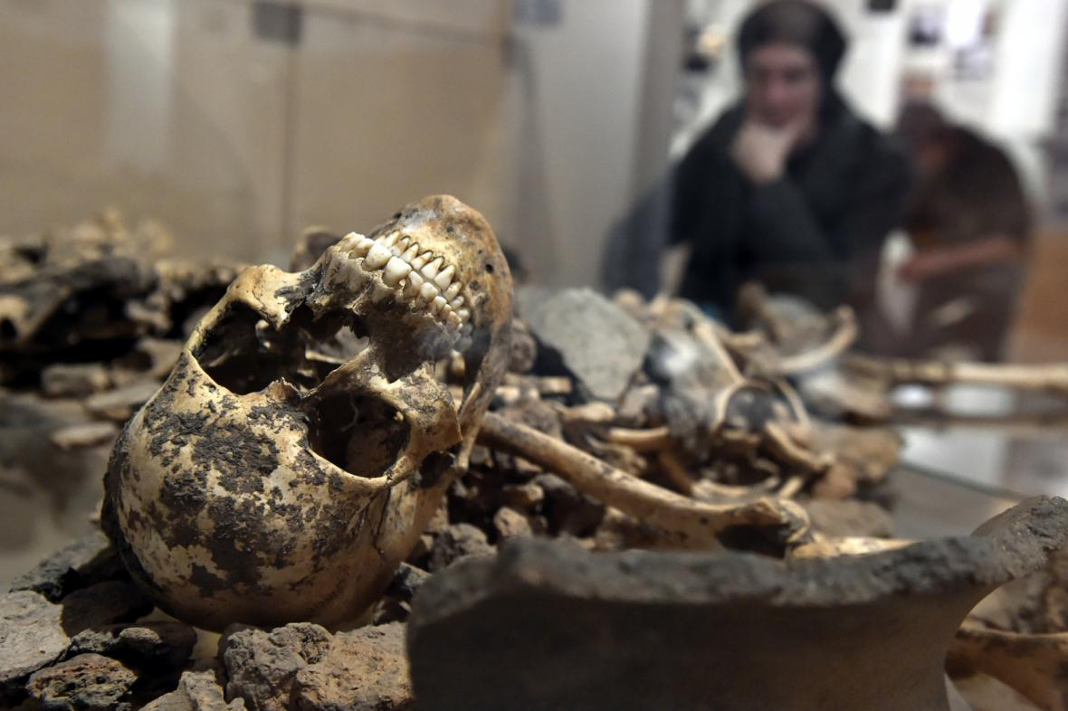 Výstava Z deníku archeologa (Slovácké muzeum)