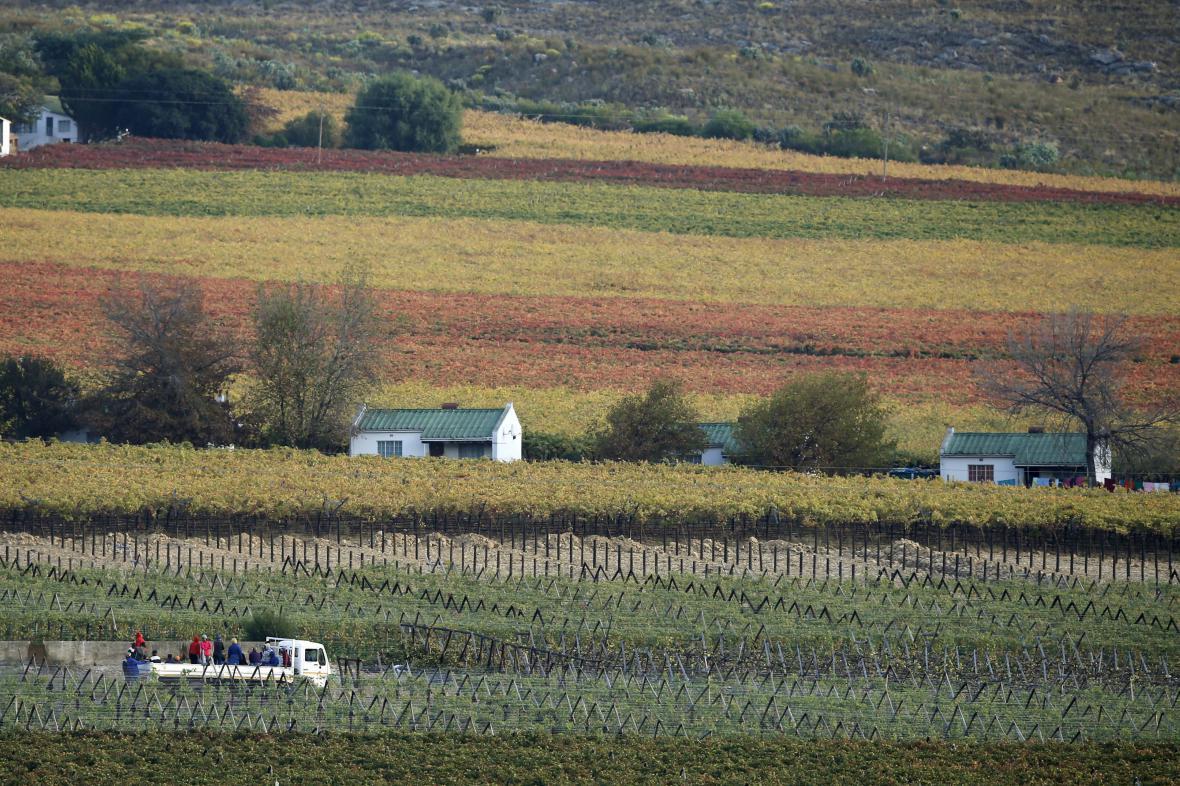 Jihoafrická farma