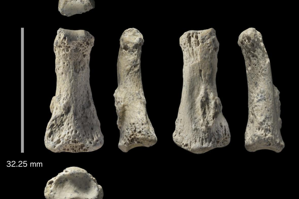 Prst starý 90 000 let