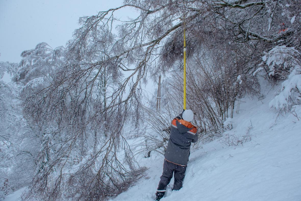 Stromy popadané pod vahou čerstvého sněhu způsobily na severu Čech desítky poruch na vedení vysokého napětí