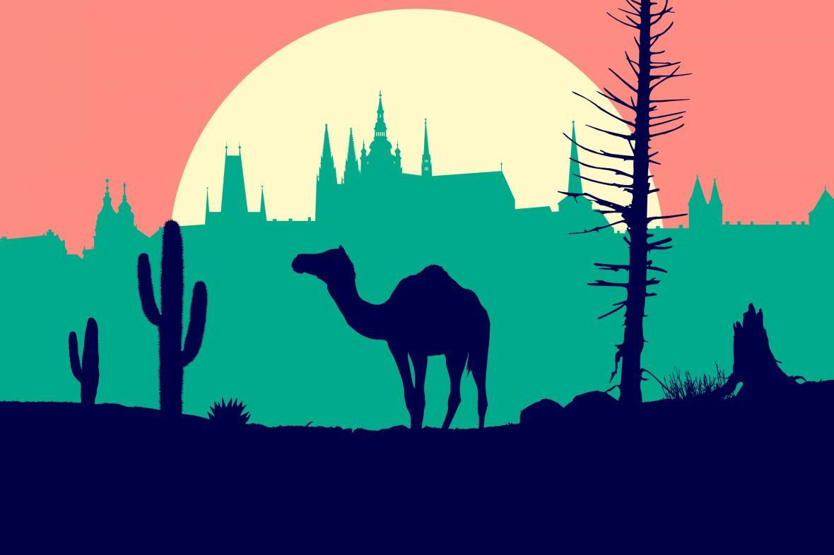 Plakát festivalu Jeden svět 2020