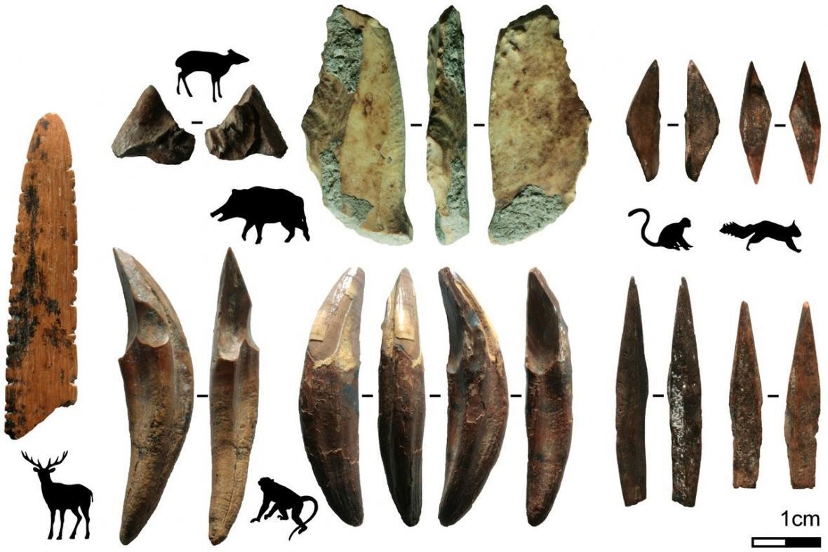 Nástroje nalezené na Srí Lance