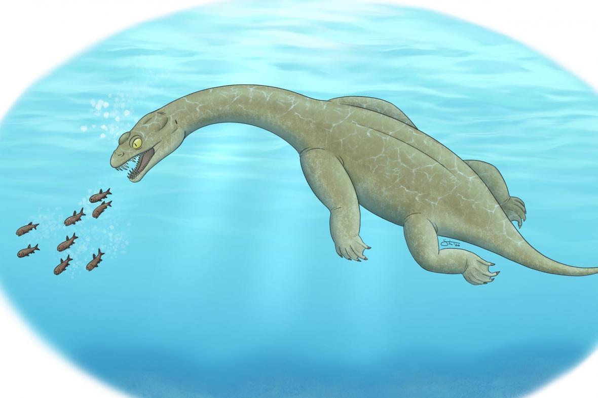 Rekonstrukce Brevicaudosaura jiyangshanensis