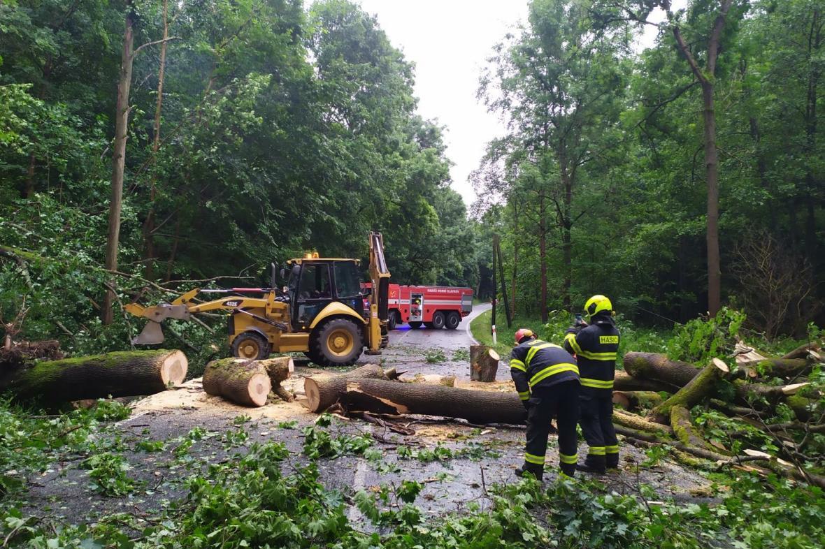 Hasiči v Karlovarském kraji po silné bouřce odklízeli popadané stromy a větve