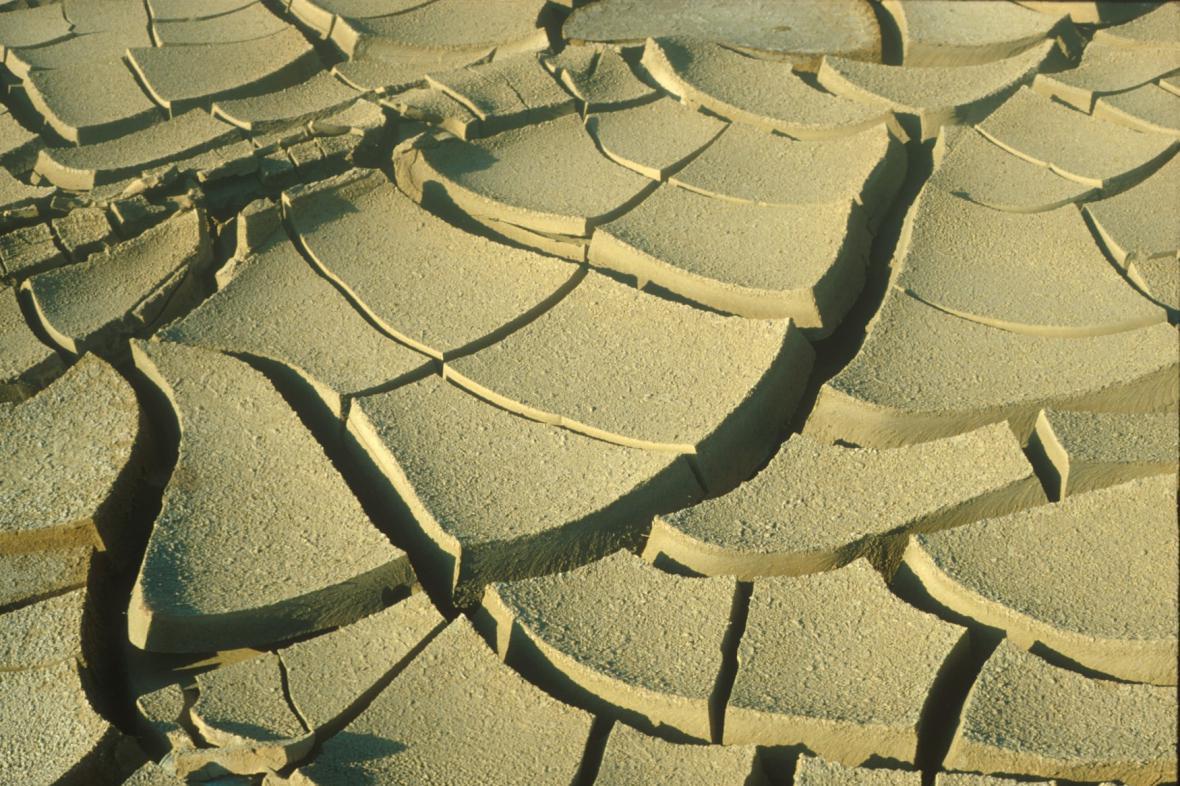 Izrael se potýká se suchem