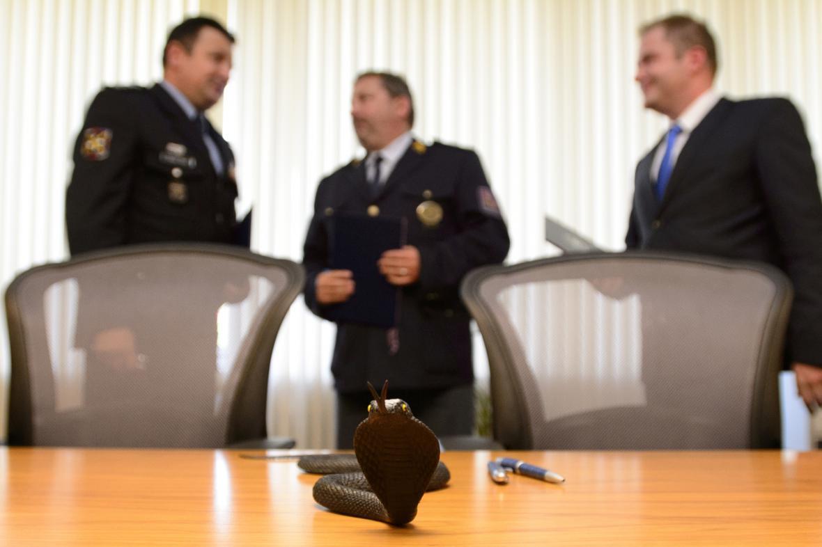Setkání představitelů Kobry