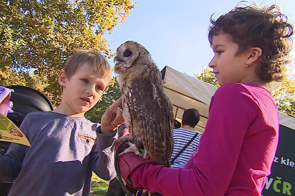 Děti poznávají přírodu