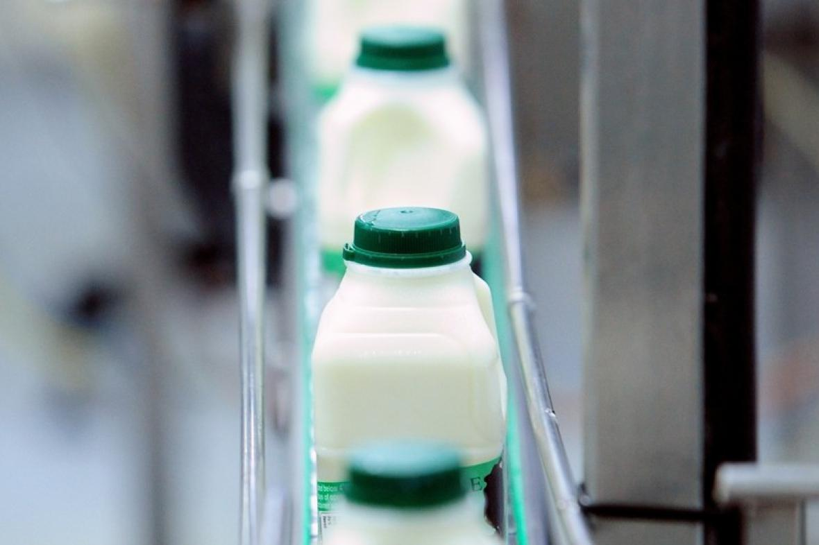 Mlékárna