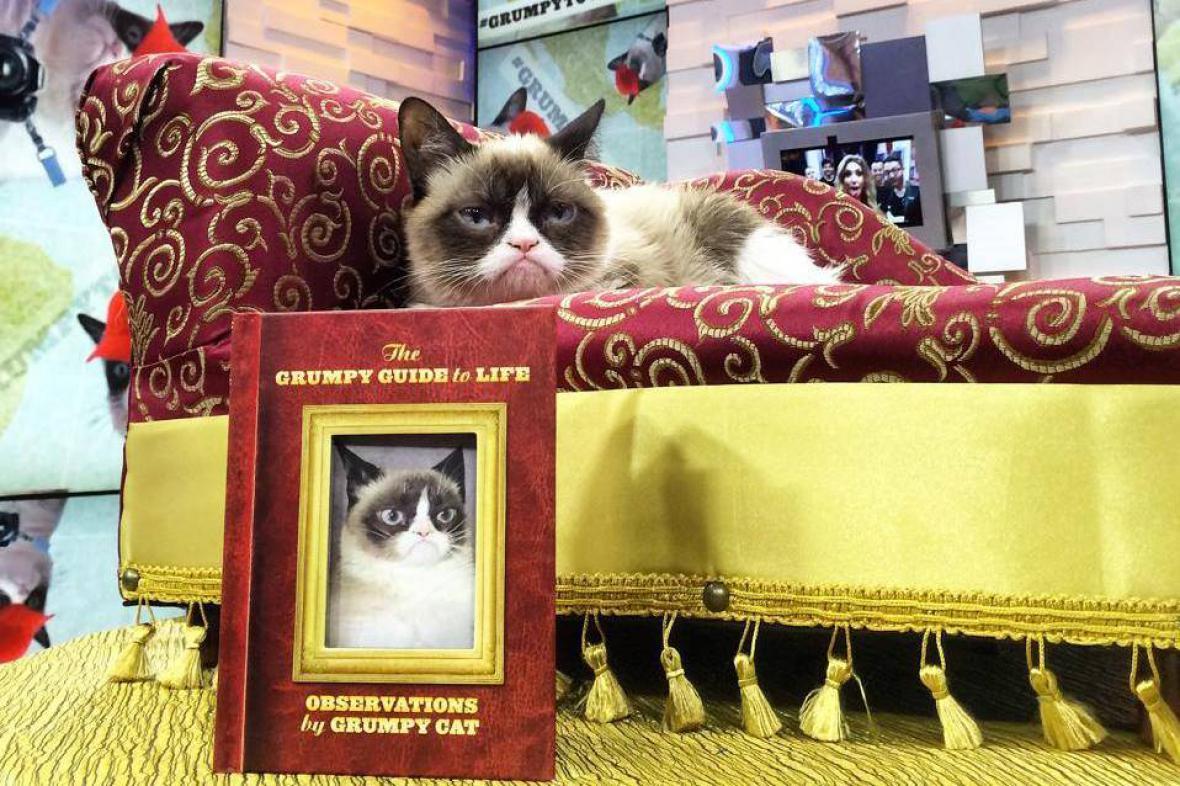 Grumpy cat vydává vlastní knihu