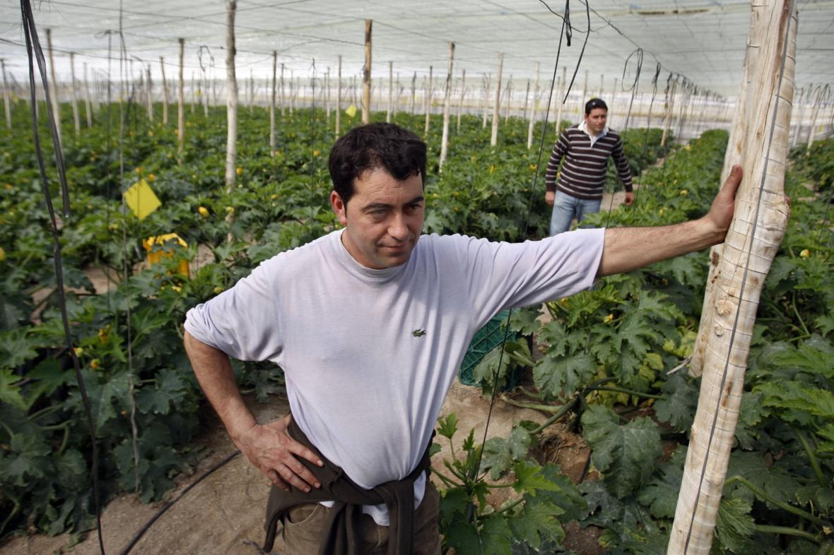 Pěstírna zeleniny ve španělském El Ejidu