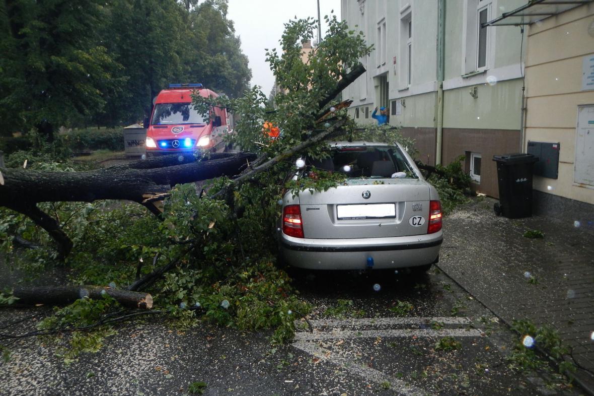 V Českých Budějovicích spadl strom na zaparkované auto