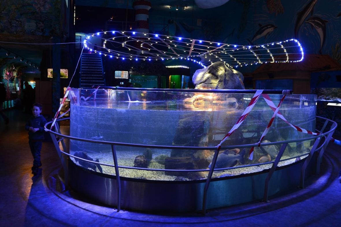 Akvárium v Mořském světě