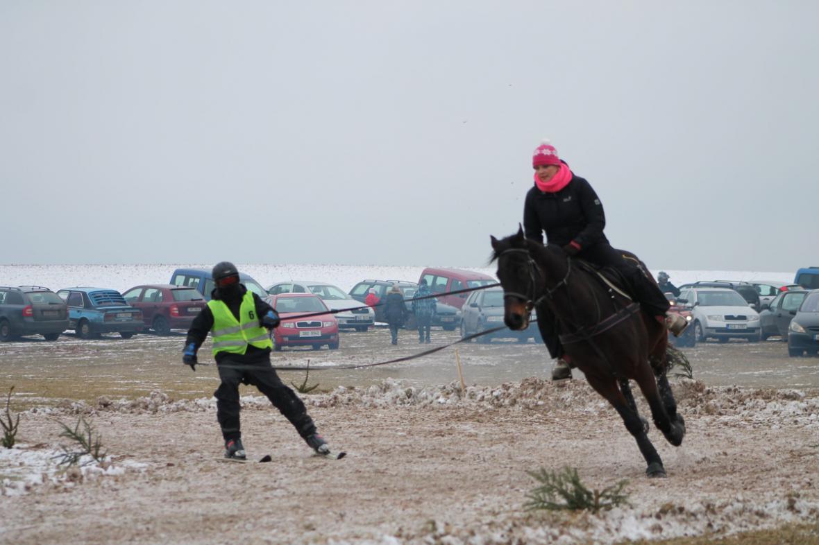 Horseskijöring v Krkonoších