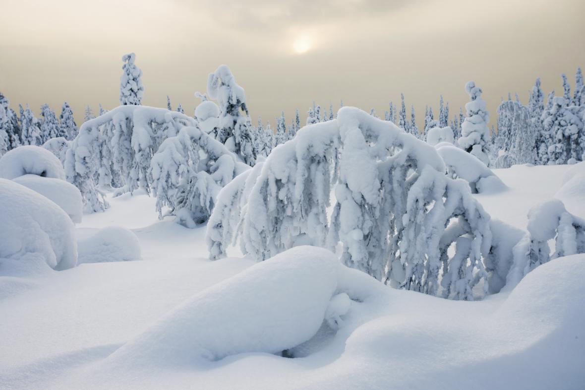 Zima v Laponsku
