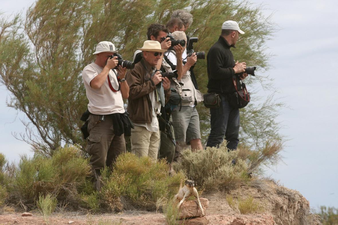 Fotografové na Dakaru