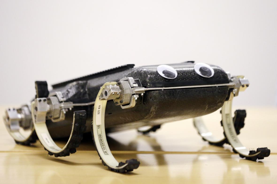 Robot RHex se předvedl veřejnosti