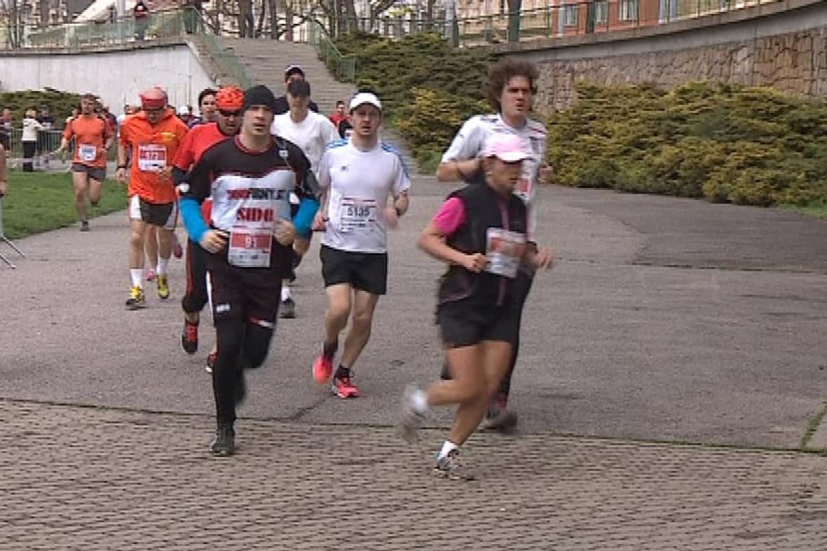 Brněnský půlmaraton 2013